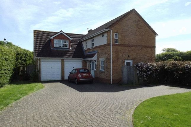 Thumbnail Detached house to rent in Norham Drive, Morpeth