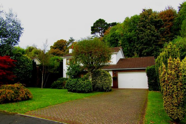 Thumbnail Detached house for sale in The Churchills, Newton Abbot
