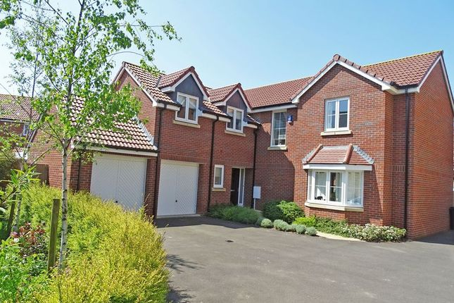 Thumbnail Detached house for sale in Norman Drive, Old Sarum, Salisbury