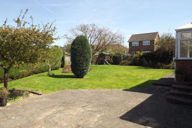 Thumbnail Detached bungalow for sale in Acres Rise, Ticehurst