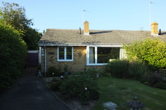 Thumbnail Semi-detached bungalow to rent in Millwood Close, Maresfield