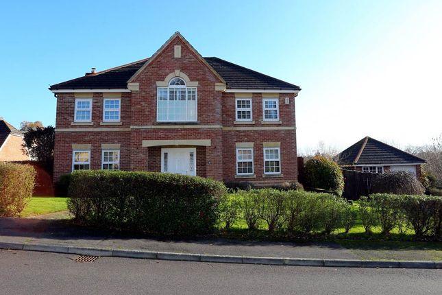 Thumbnail Property to rent in Spring Gardens, Newbury, Berkshire