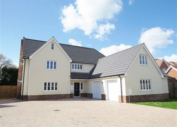 Thumbnail Detached house for sale in Edward Marke Drive, Langenhoe, Colchester