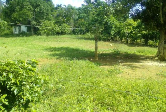 Land for sale in Moneague, Saint Ann, Jamaica