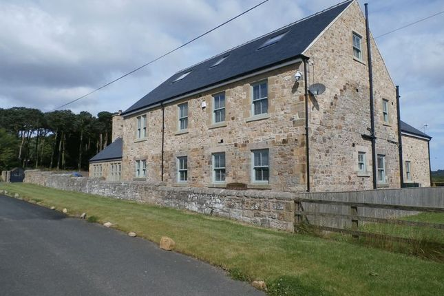 Thumbnail Cottage for sale in Deanmoor, Shilbottle, Alnwick