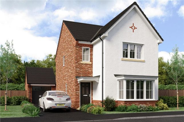 """Thumbnail Detached house for sale in """"Esk"""" at Joe Lane, Catterall, Preston"""