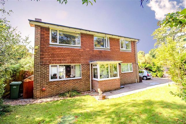 Thumbnail Detached house for sale in Avondale Road, St Leonards-On-Sea, East Sussex