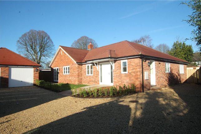 Thumbnail Detached bungalow for sale in Ricketts Lane, Sturminster Newton