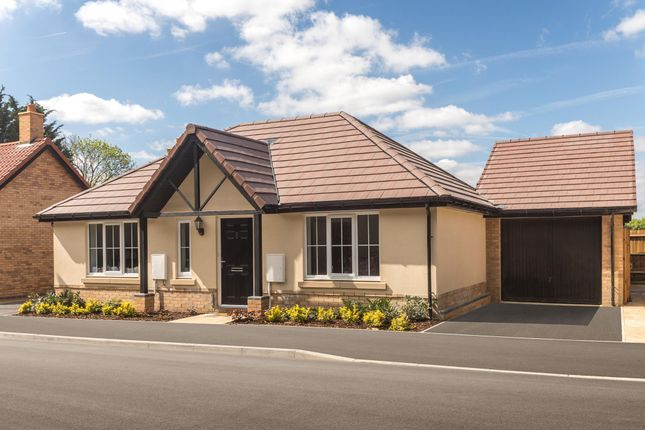 "Thumbnail Bungalow for sale in ""Wellow"" at Stansted Road, Elsenham, Bishop's Stortford"