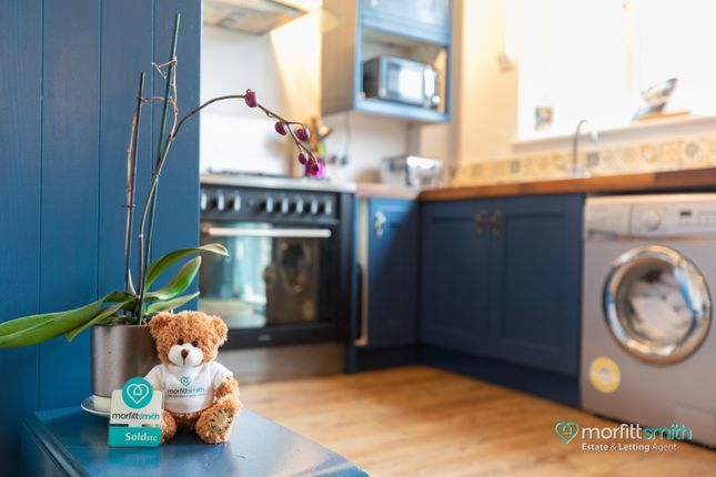 Smiffy Bear of Worrall Road, Wadsley, - Viewing Advised S6