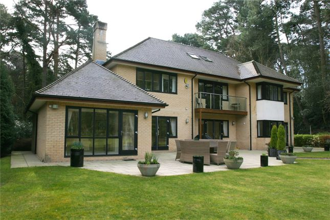 Picture 8 of Bury Road, Branksome Park, Poole BH13