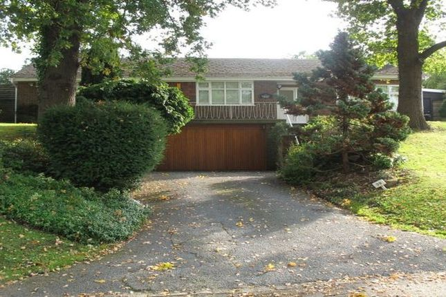 Thumbnail Bungalow to rent in Old Bath Road, Sonning, Reading