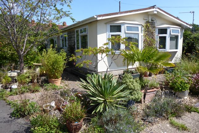Thumbnail Mobile/park home for sale in Homestead Park, Wookey Hole, Wells, Somerset