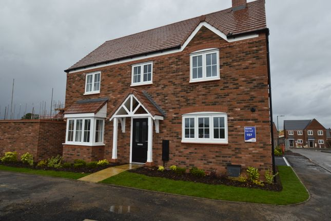 Thumbnail Detached house to rent in Squinter Pip Way, Bowbrook Meadows, Shrewsbury