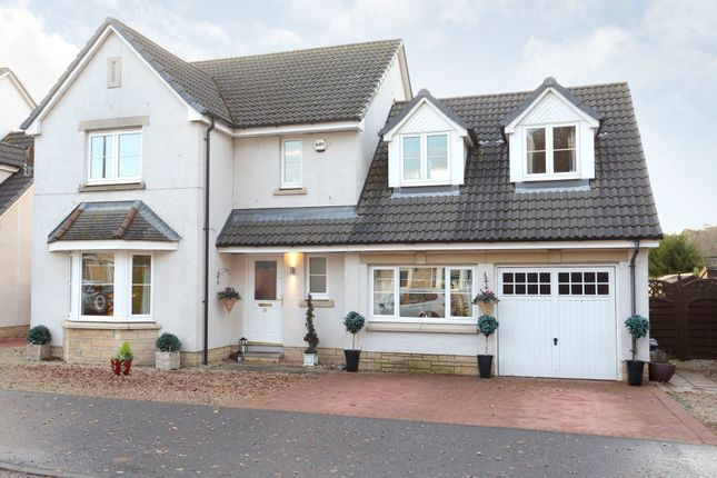 Thumbnail Detached house for sale in Silver Birch Drive, Dundee