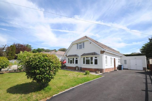 Thumbnail Bungalow for sale in Springfield Road, Lower Parkstone, Poole
