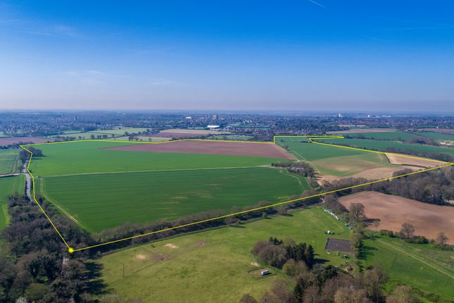 Thumbnail Land for sale in Rushmere, Ipswich
