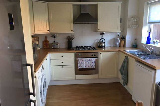 Thumbnail Semi-detached house to rent in Derwent Road, Leighton Buzzard