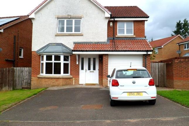 Thumbnail Detached house to rent in Troon Terrace, Dundee