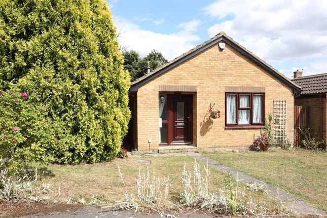Thumbnail Detached bungalow to rent in Gilbey Close, Redhill Grange, Wellingborough