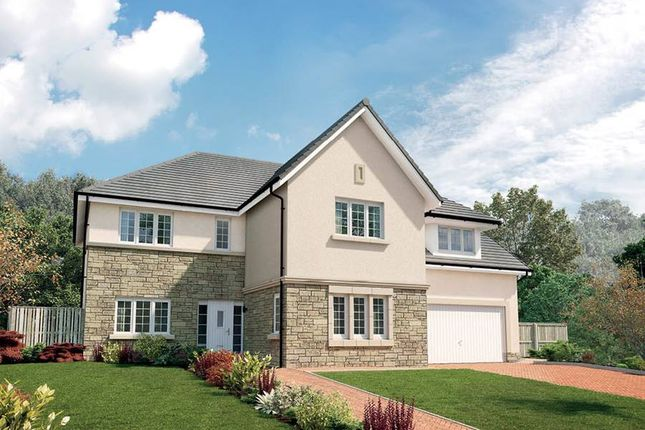 """Thumbnail Detached house for sale in """"The Ramsay"""" at Queens Drive, Cumbernauld, Glasgow"""
