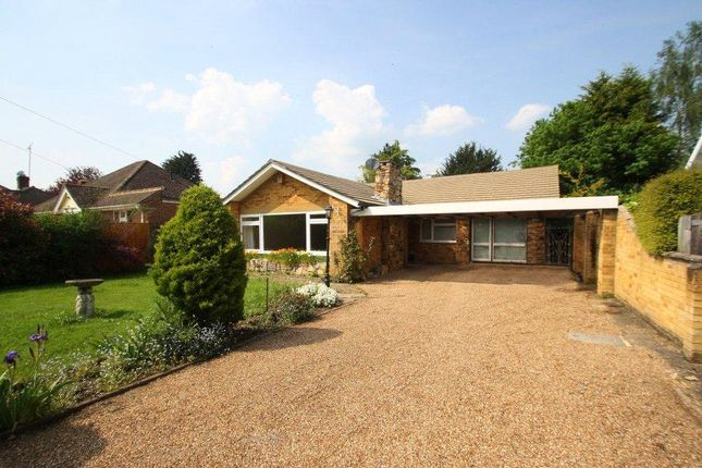 Thumbnail Detached bungalow to rent in Almners Road, Lyne, Surrey