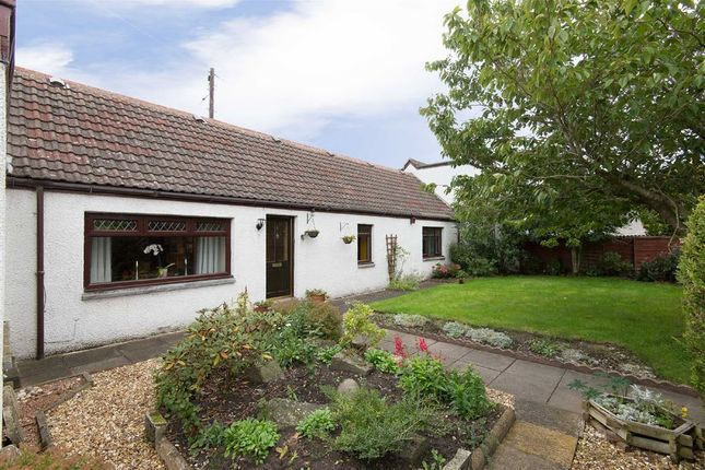 Thumbnail Cottage to rent in Well Road, Lunanhead, Forfar