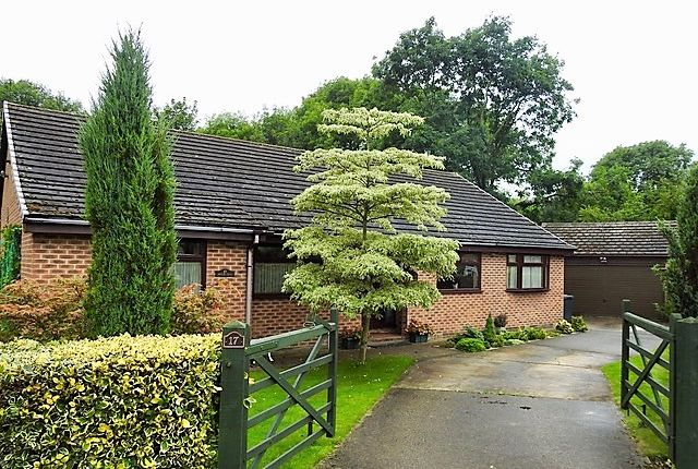 Thumbnail Bungalow for sale in Bretby Road, Linacre Woods, Chesterfield