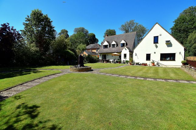 Thumbnail Detached house for sale in Warden Road, Ickwell, Biggleswade