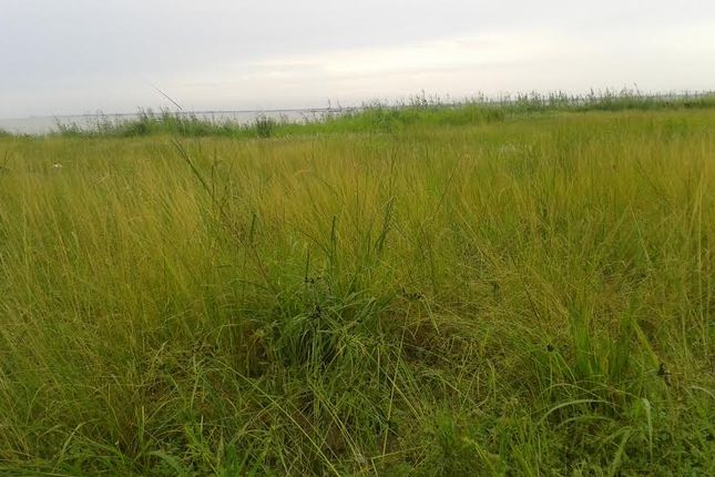 Thumbnail Land for sale in Sekondi- Takoradi, Sekondi-Takoradi, Ghana