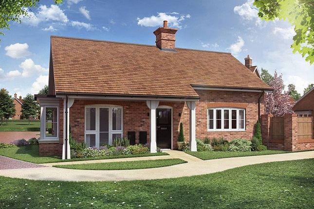Thumbnail Detached bungalow for sale in Sachel Court Drive, Alfold, Cranleigh