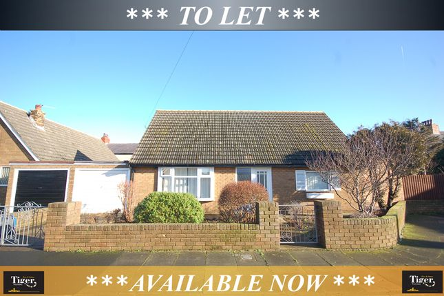 Thumbnail Detached bungalow to rent in Hampshire Place, Blackpool
