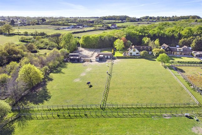 Thumbnail Equestrian property for sale in Colchester Road, Tiptree, Colchester