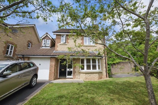 Thumbnail Detached house for sale in South Meadow, Wells