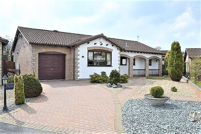 Thumbnail Detached bungalow for sale in Burghley Road, Lincoln