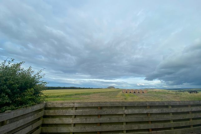 Photo 16 of Seggarsdean Farm, Haddington, East Lothian EH41