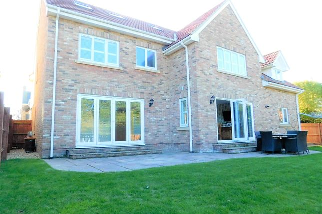 Thumbnail Detached house for sale in Lambs Close, Shefford, Beds