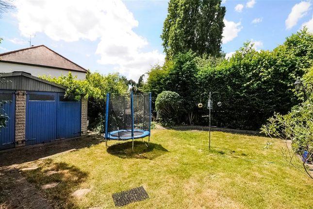 Garden of Ellesmere Road, Chiswick, London W4