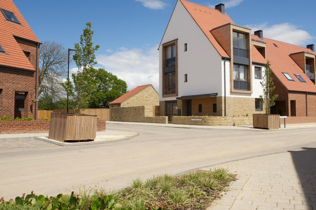 """Thumbnail End terrace house for sale in """"Owl"""" at Derwent Way, York"""