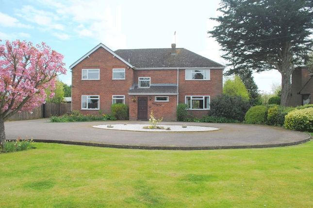 Thumbnail Detached house for sale in Beggars Roost, Avenue Road, Rushden