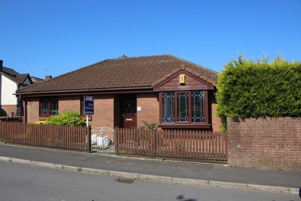 Thumbnail Detached bungalow to rent in Hollybush Drive, Swansea
