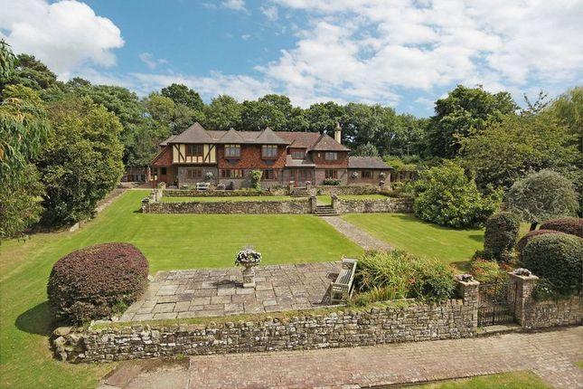 Thumbnail Detached house for sale in Ashdown Forest, Fairwarp, East Sussex