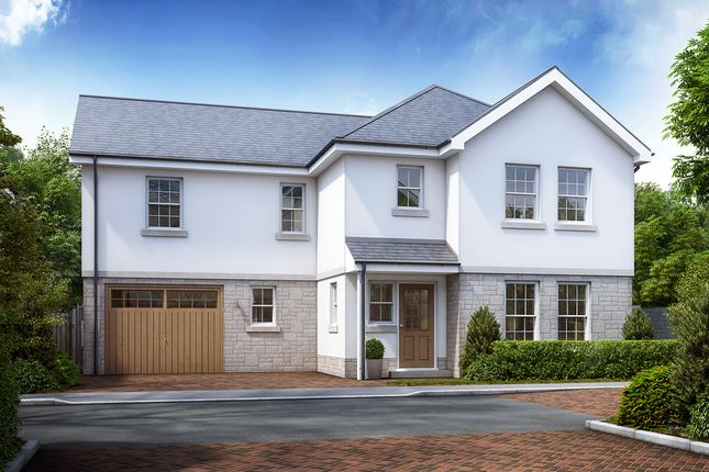 Thumbnail Detached house for sale in The Camellia, Mayhew Gardens, Plympton