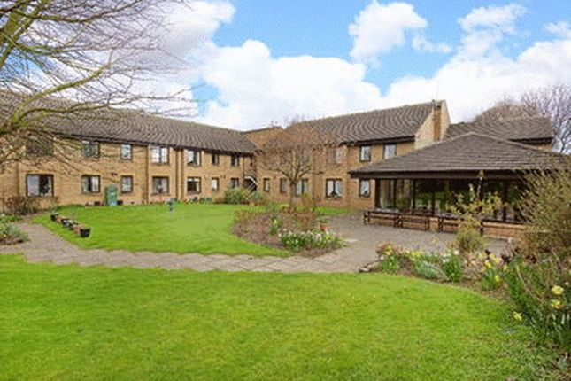 Thumbnail Flat to rent in Percy Court, Alnwick