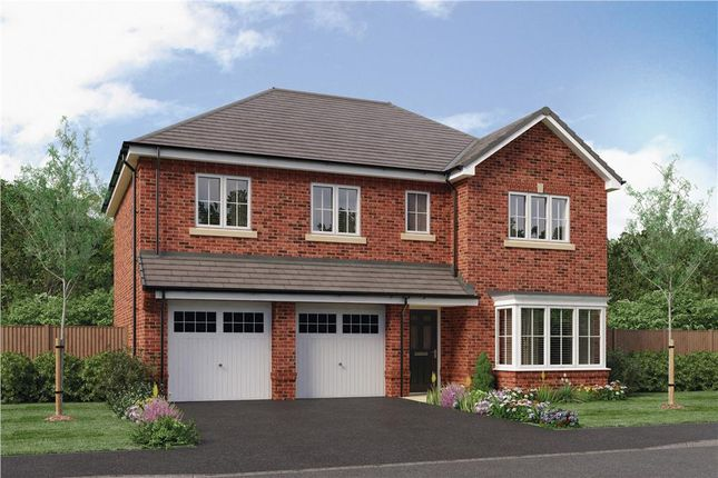"Thumbnail Detached house for sale in ""Buttermere"" at Hastings Close, Chesterfield"