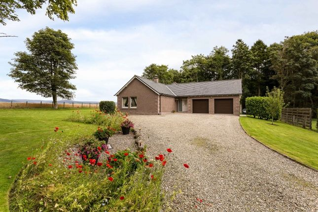 Thumbnail Bungalow for sale in Battledykes, Forfar