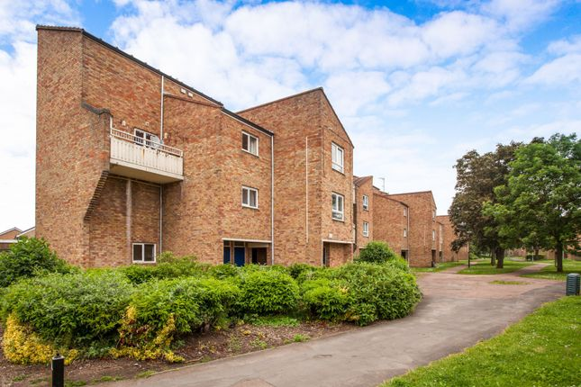 Thumbnail Property to rent in Albemarle Way, Cambridge