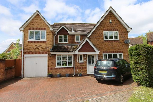 Thumbnail Detached house for sale in Armada Close, Rownhams, Southampton