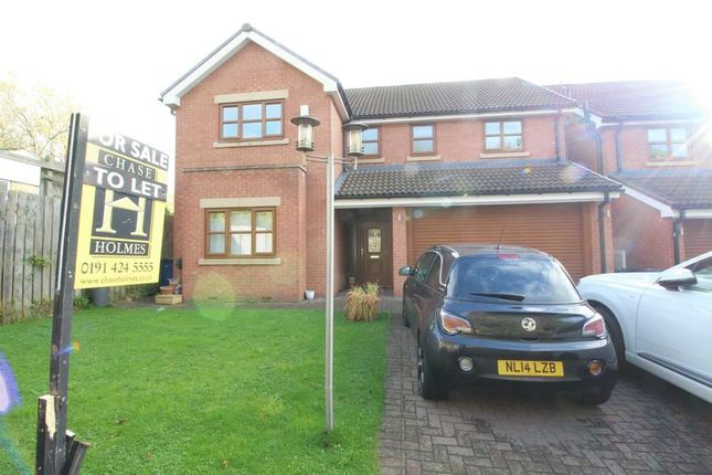 Thumbnail Detached house to rent in West Park View, South Shields