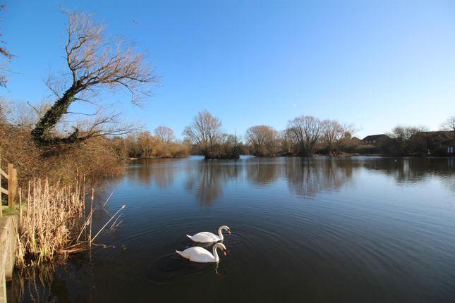 Singleton Lake of Bucksford Lane, Singleton, Ashford TN23